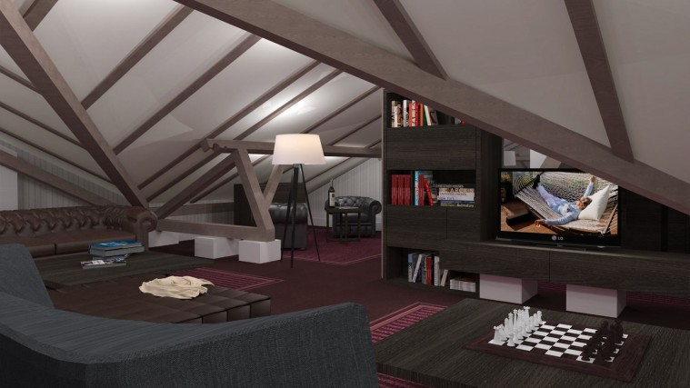visualization of attic